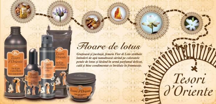 Poster A4 Tesori_lotus